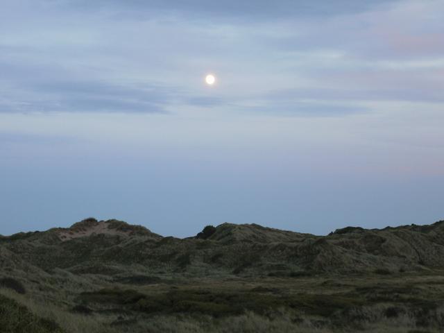 The Full Moon at Braunton Burrows