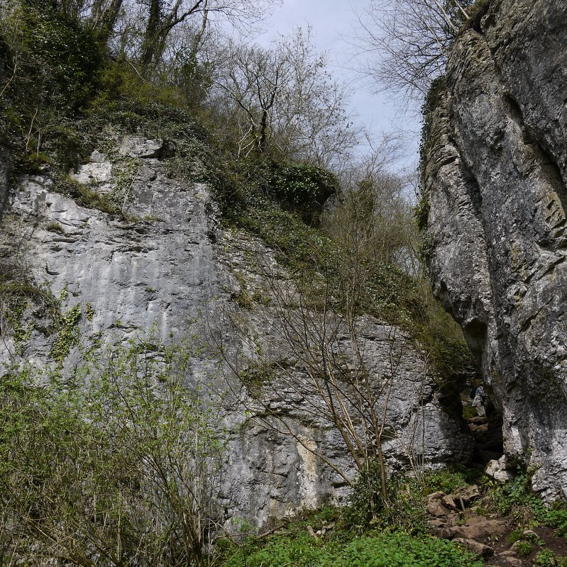 Ebbor Gorge - April 2011
